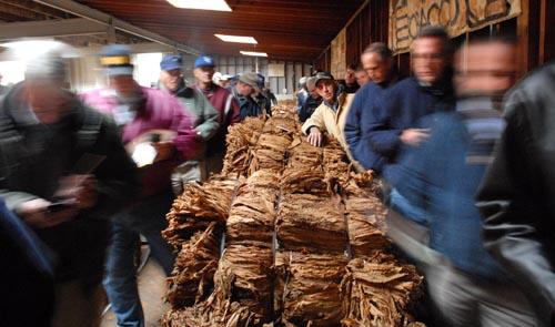 farmers-8-112006.jpg